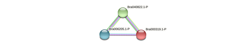 Bra000319 protein (Brassica rapa) - STRING interaction network