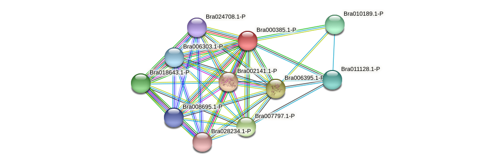 Bra000385 protein (Brassica rapa) - STRING interaction network