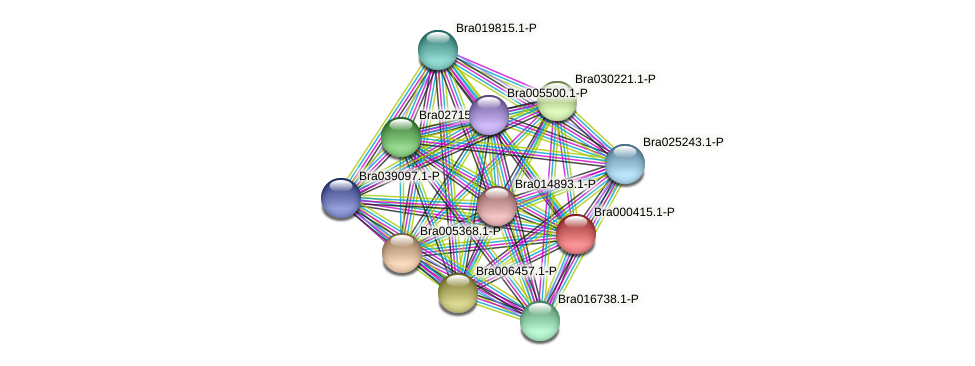 Bra000415 protein (Brassica rapa) - STRING interaction network