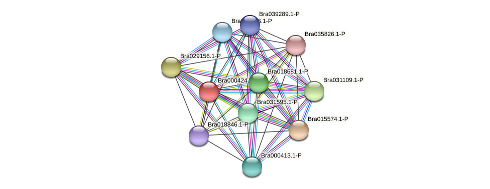 Bra000424 protein (Brassica rapa) - STRING interaction network