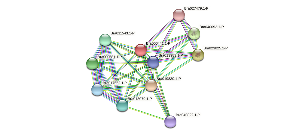 Bra000441 protein (Brassica rapa) - STRING interaction network