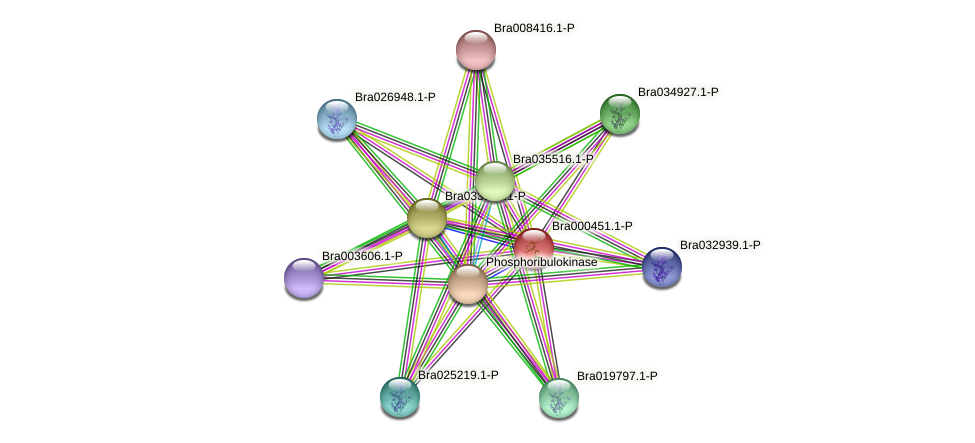 Bra000451 protein (Brassica rapa) - STRING interaction network