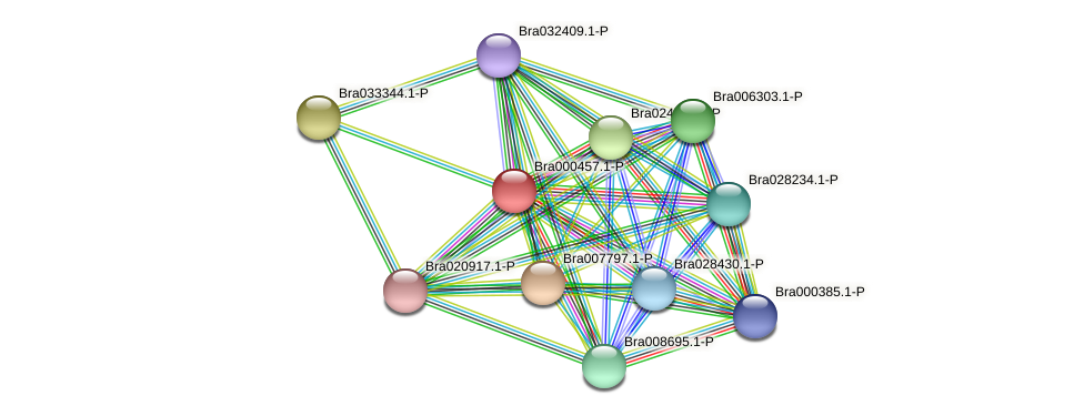 Bra000457 protein (Brassica rapa) - STRING interaction network
