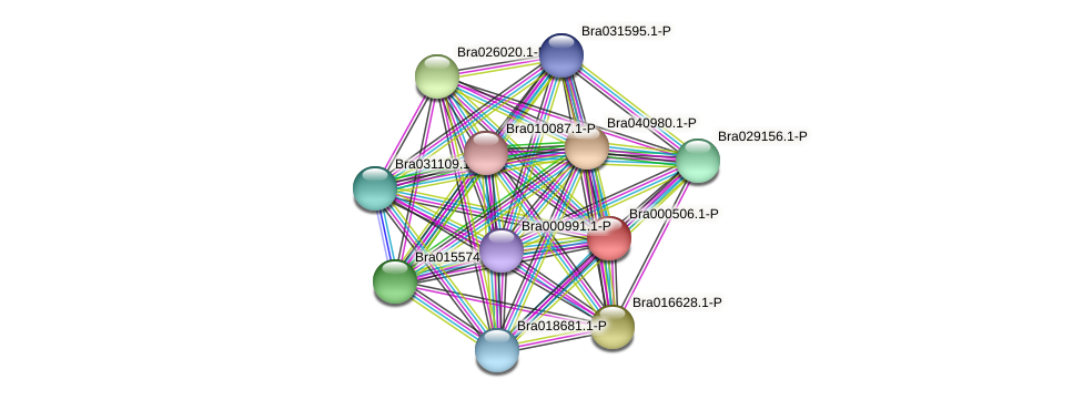 Bra000506 protein (Brassica rapa) - STRING interaction network
