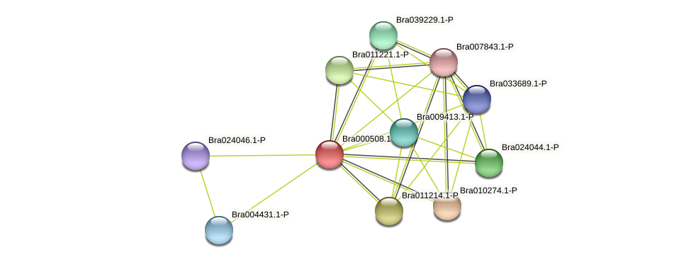 Bra000508 protein (Brassica rapa) - STRING interaction network