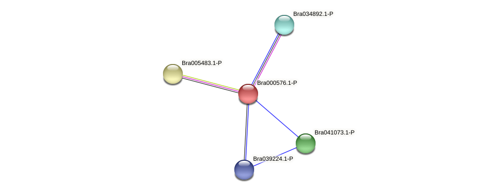 Bra000576 protein (Brassica rapa) - STRING interaction network