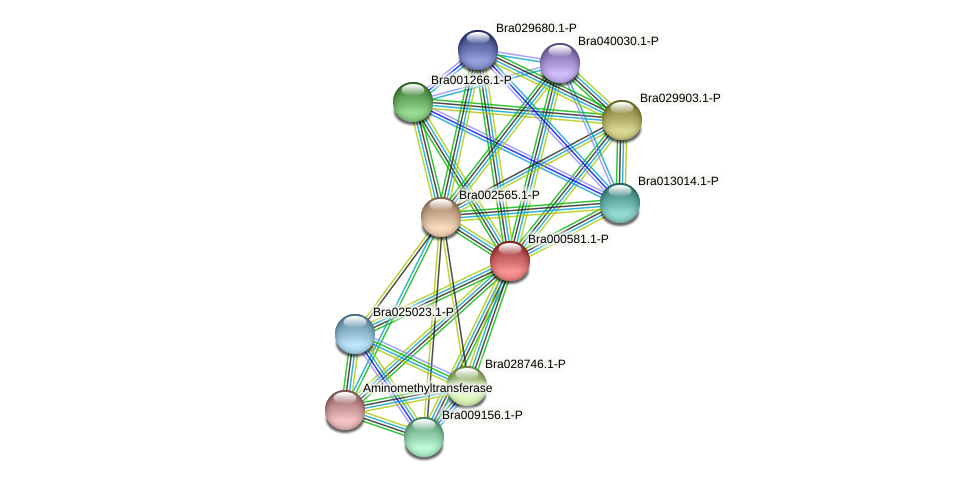 Bra000581 protein (Brassica rapa) - STRING interaction network