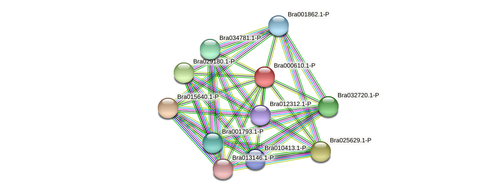 Bra000610 protein (Brassica rapa) - STRING interaction network