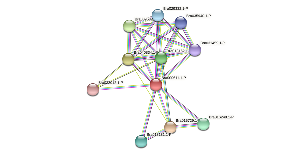 Bra000611 protein (Brassica rapa) - STRING interaction network