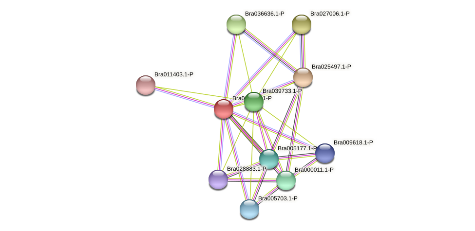 Bra000638 protein (Brassica rapa) - STRING interaction network