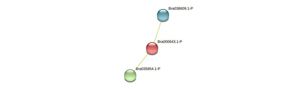 Bra000643 protein (Brassica rapa) - STRING interaction network
