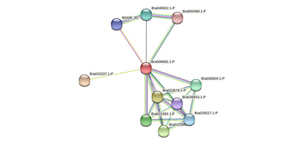 Bra000662 protein (Brassica rapa) - STRING interaction network
