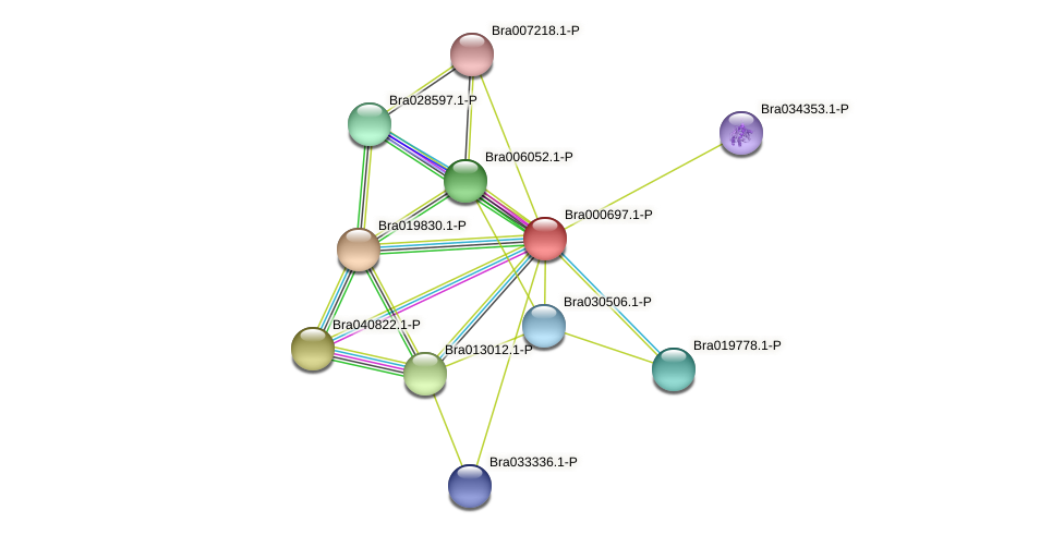 Bra000697 protein (Brassica rapa) - STRING interaction network