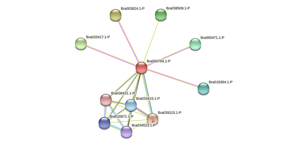Bra000769 protein (Brassica rapa) - STRING interaction network