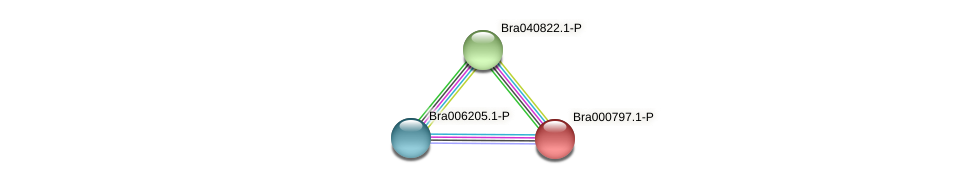 Bra000797 protein (Brassica rapa) - STRING interaction network