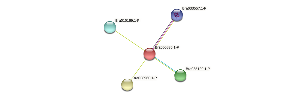 Bra000835 protein (Brassica rapa) - STRING interaction network