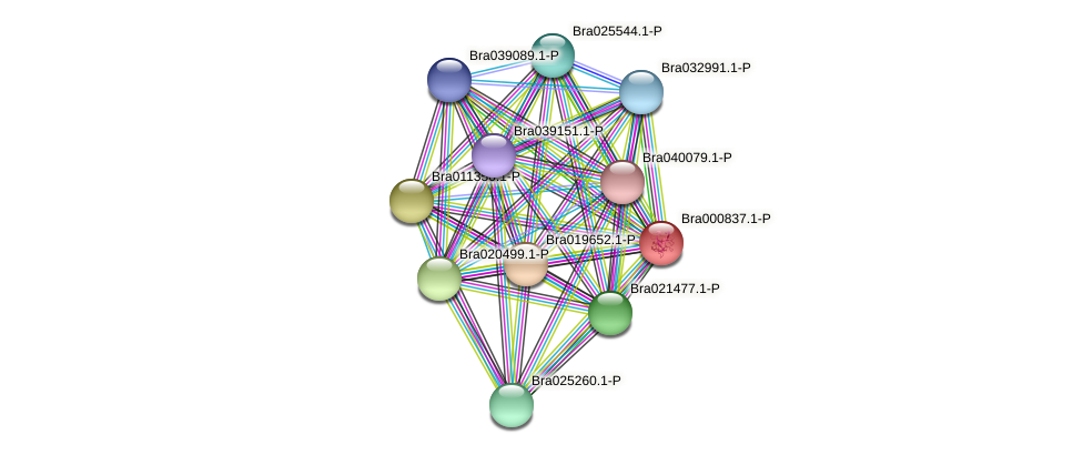 Bra000837 protein (Brassica rapa) - STRING interaction network