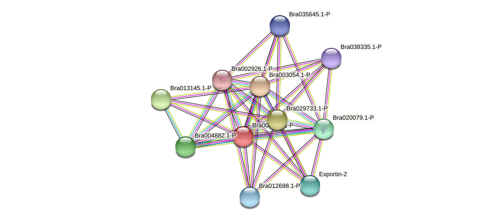 Bra000891 protein (Brassica rapa) - STRING interaction network