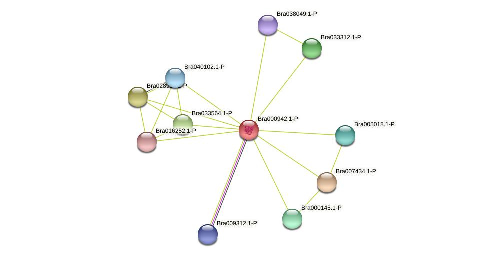 Bra000942 protein (Brassica rapa) - STRING interaction network