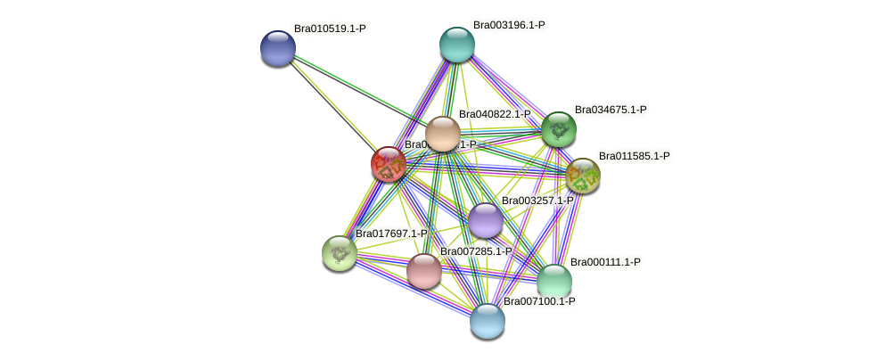 Bra000974 protein (Brassica rapa) - STRING interaction network