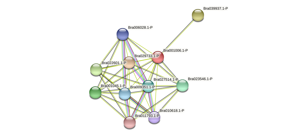 Bra001006 protein (Brassica rapa) - STRING interaction network