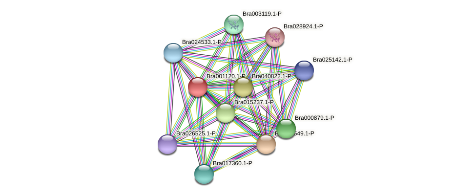 Bra001120 protein (Brassica rapa) - STRING interaction network