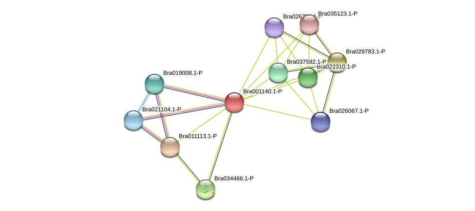 Bra001140 protein (Brassica rapa) - STRING interaction network