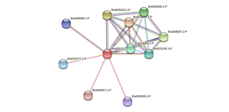 Bra001151 protein (Brassica rapa) - STRING interaction network