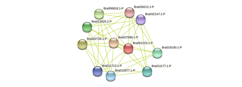 Bra001223 protein (Brassica rapa) - STRING interaction network