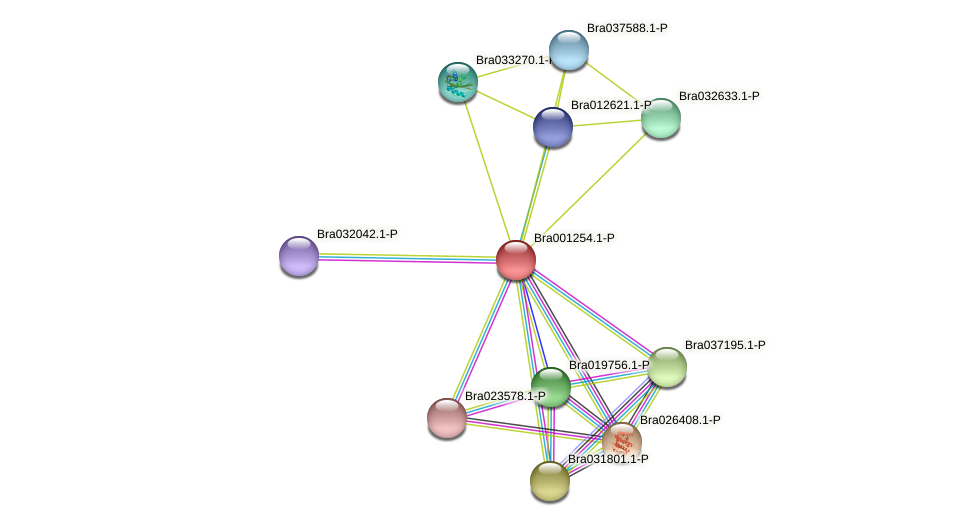 Bra001254 protein (Brassica rapa) - STRING interaction network