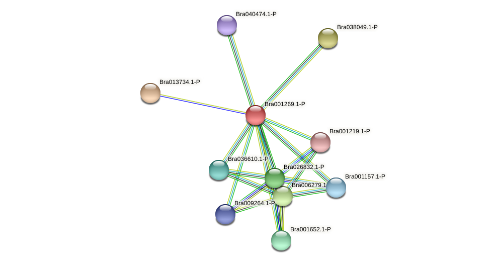 Bra001269 protein (Brassica rapa) - STRING interaction network