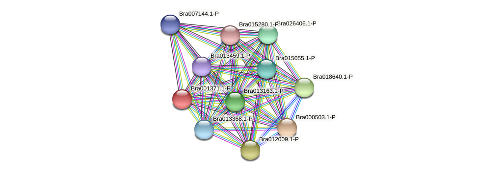 Bra001371 protein (Brassica rapa) - STRING interaction network