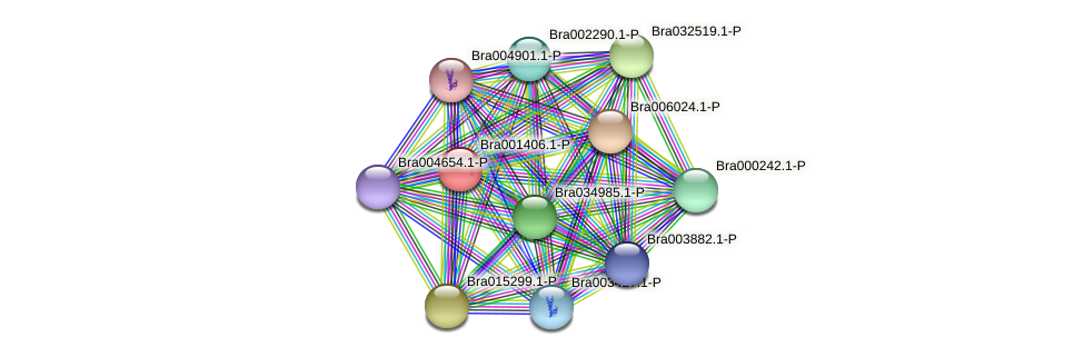 Bra001406 protein (Brassica rapa) - STRING interaction network