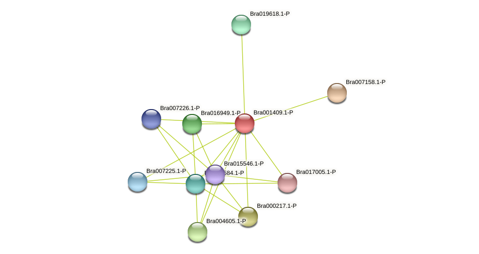 Bra001409 protein (Brassica rapa) - STRING interaction network