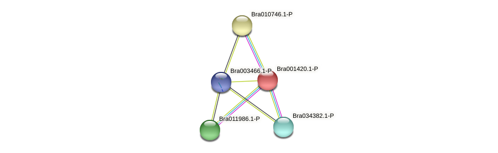 Bra001420 protein (Brassica rapa) - STRING interaction network
