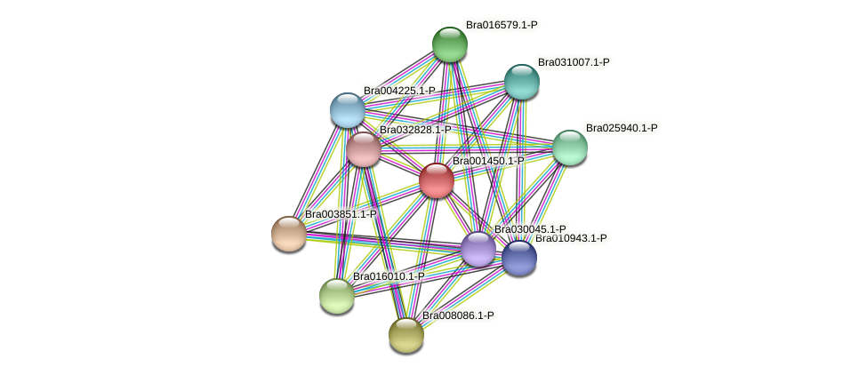Bra001450 protein (Brassica rapa) - STRING interaction network