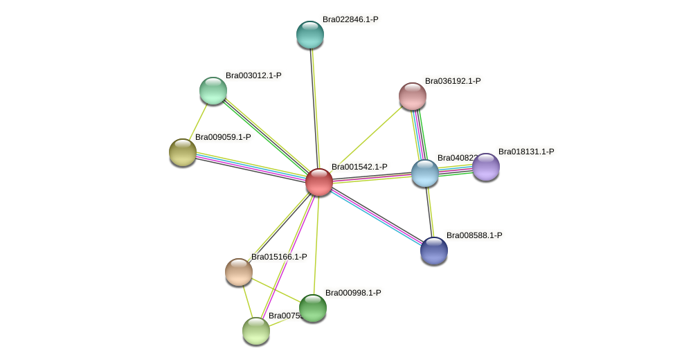 Bra001542 protein (Brassica rapa) - STRING interaction network