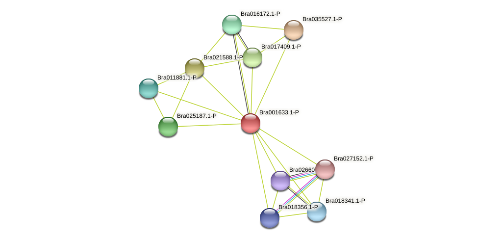 Bra001633 protein (Brassica rapa) - STRING interaction network