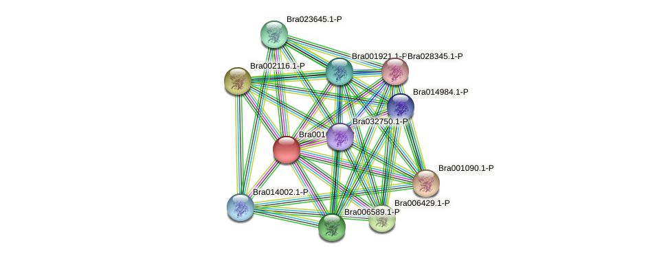 Bra001661 protein (Brassica rapa) - STRING interaction network