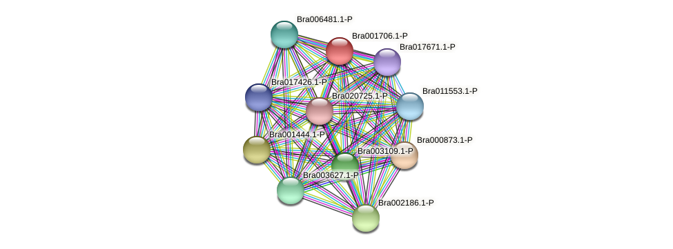 Bra001706 protein (Brassica rapa) - STRING interaction network