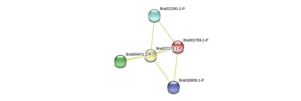 Bra001769 protein (Brassica rapa) - STRING interaction network