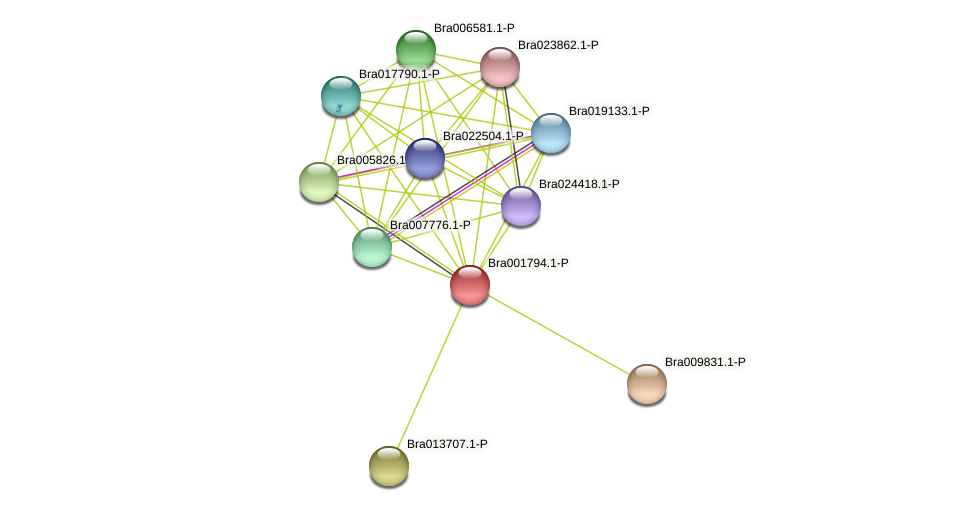Bra001794 protein (Brassica rapa) - STRING interaction network