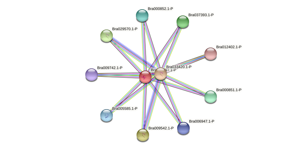 Bra001797 protein (Brassica rapa) - STRING interaction network