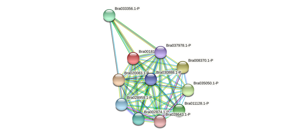 Bra001810 protein (Brassica rapa) - STRING interaction network