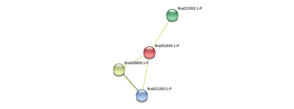 Bra001845 protein (Brassica rapa) - STRING interaction network