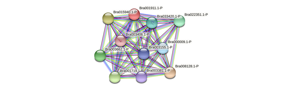 Bra001911.1-P protein (Brassica rapa) - STRING interaction network