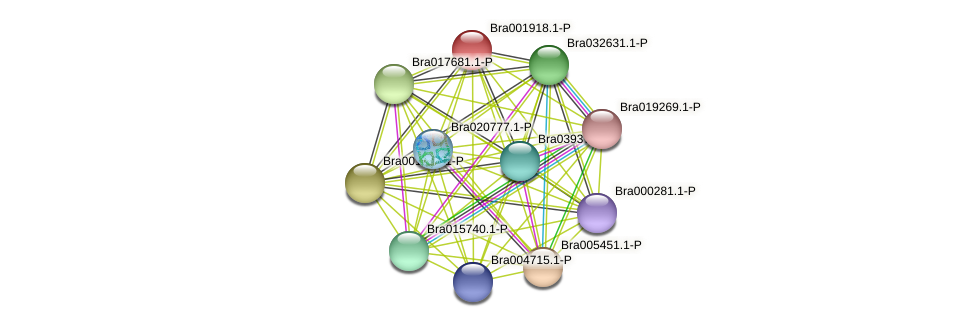 Bra001918 protein (Brassica rapa) - STRING interaction network