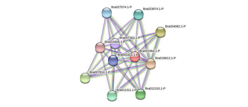 Bra001964 protein (Brassica rapa) - STRING interaction network
