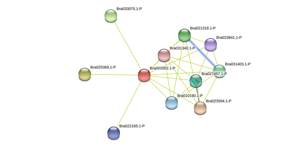 Bra002002 protein (Brassica rapa) - STRING interaction network