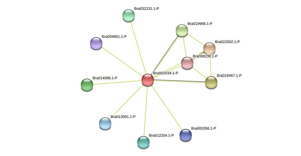 Bra002034 protein (Brassica rapa) - STRING interaction network